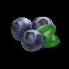 Freeze-dried berries