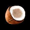 Bio coconut chips